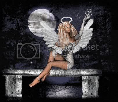 Sexy Angel Pictures, Images and Photos